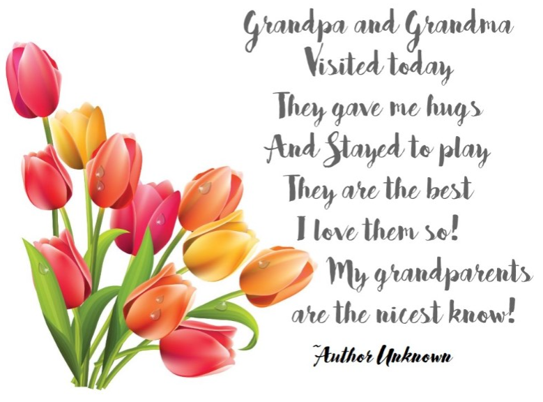 The best image of Grandparent Day