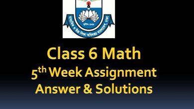 Class 6 Math Assignment Answer 5th week 2020