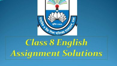 class 8 english Assignment solution