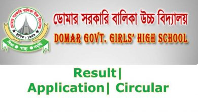 Domar govt girl school