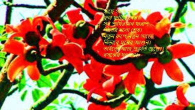 Pohela Falgun 2021 Wishes, Message,SMS,Images, Pic & Wallpaper