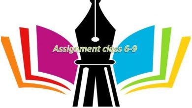 3rd Week Assignment Syllabus & Answer For Class 6, 7, 8 & 9 (www dshe gov bd )