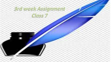 3rd week Class 7 Assignment All Subjects Answer 2021