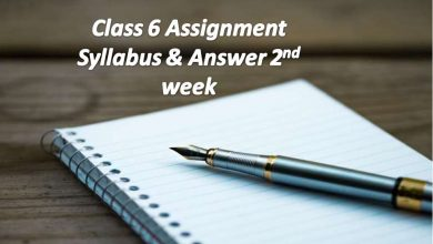 Class 6 Assignment Answers All Subject 2021 [2nd Week]