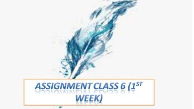 Class 6 Assignment Answers All Subject 2021 [First Week]