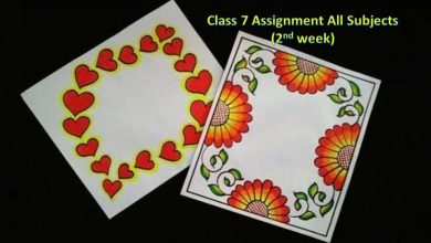 Class 7 Assignment Answers All Subject 2021 [2nd Week]
