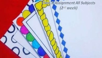 Class 8 Assignment Answers All Subject 2021 [2nd Week]