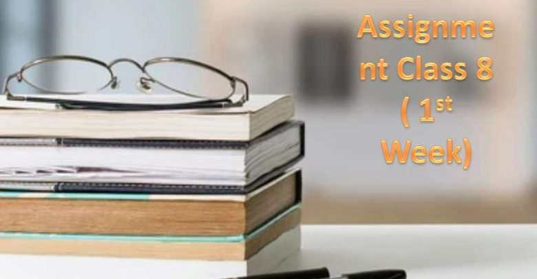Class 8 Assignment Answers All Subject [First Week]