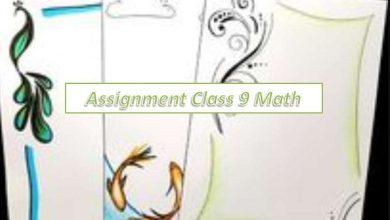 3rd week Class 9 Assignment Math Answer