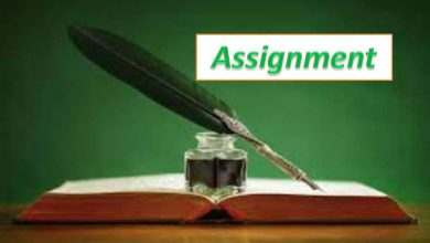 4th Week Assignment Syllabus & Answer 2021 For Class 6, 7, 8 & 9 (www dshe gov bd )