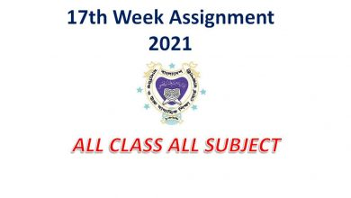 17th Week Assignment 2021 PDF Download of Class 6, 7, 8 & 9
